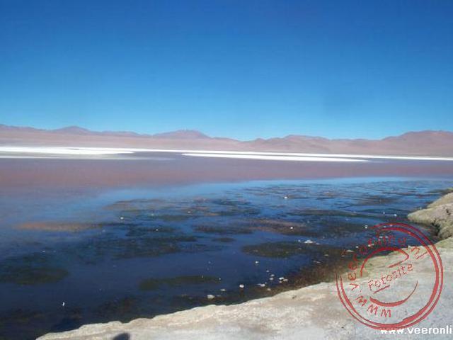 Het Laguna Colorada