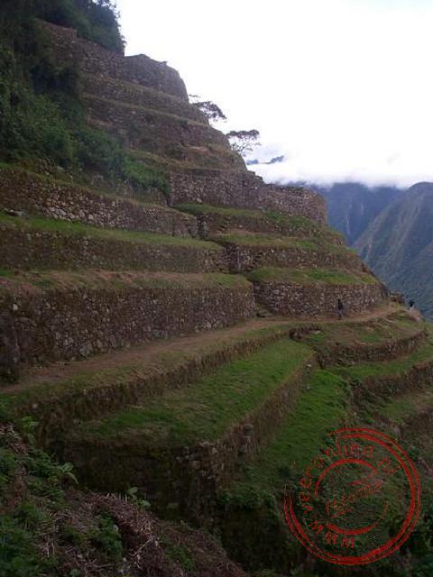 De Inka-terrassen nabij Winaywayna