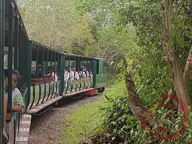 Aan de Argentijnse zijde van de waterval rijdt een treintje