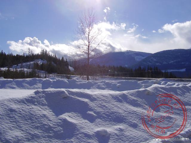 Een winters plaatje tussen Clearwater en Jasper