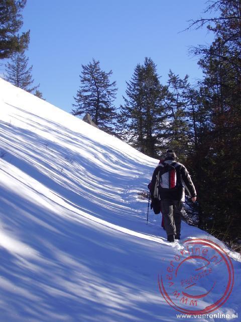 Wandelen door de sneeuw