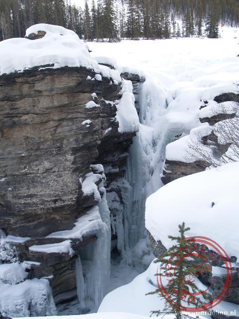 De bevroren Athabasca Falls