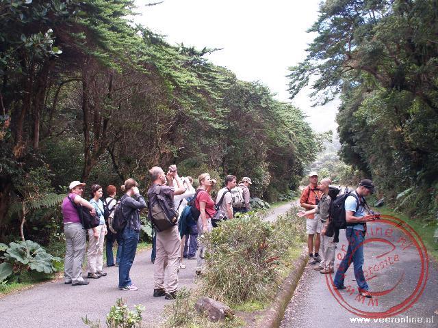 De reisgroep in het Poás Nacional Park