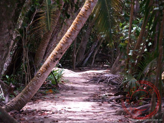 Het natuurpad door het National Parc Cahuita