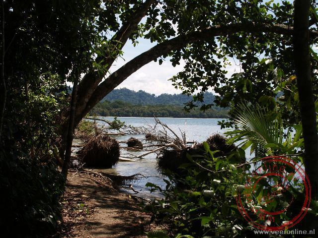 Een doorkijkje naar het Caribische paradijs