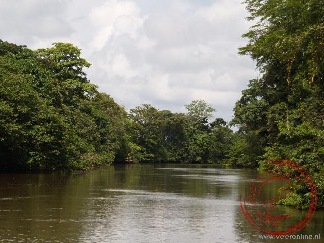 De rivier Rio Frio in Caño Negro