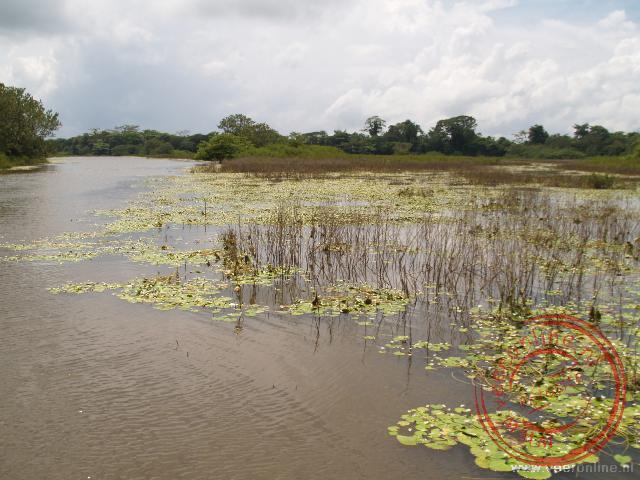Het natuurgebied Caño Negro in het noorden van Costa Rica