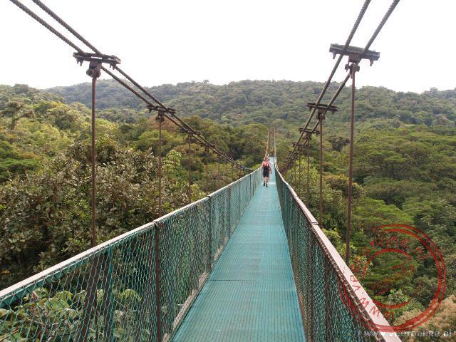 De langste hangbrug in het Selvature park is 160 meter lang