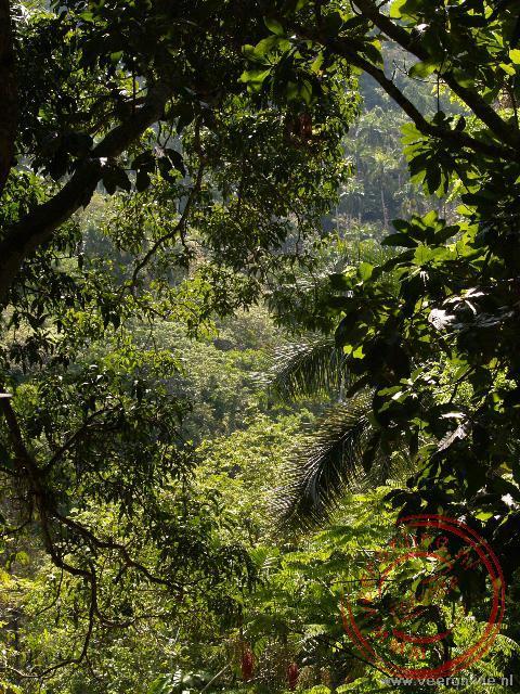 Een bezoek aan een natuurpark op weg naar Viñales nabij Les Terrazas
