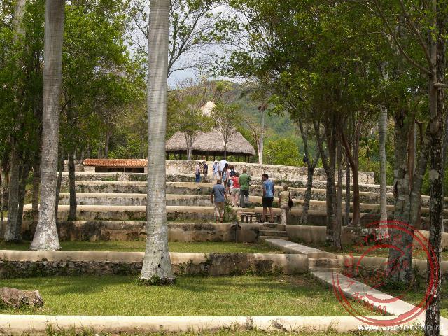 De terrassen van de koffieplantage