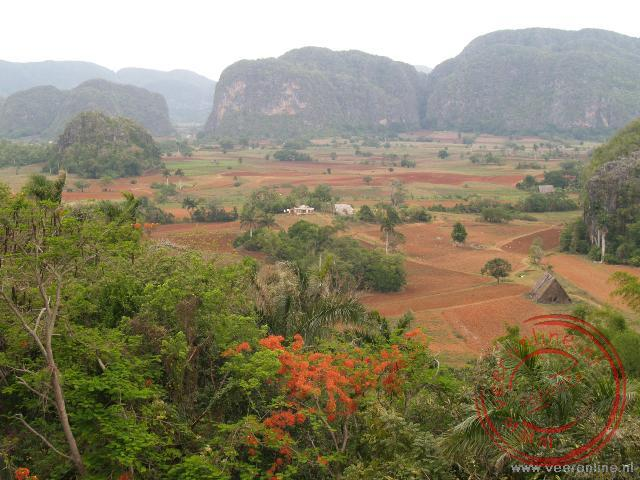 Het uitzicht op de vallei van Viñales met op de achtergrond de bergketens