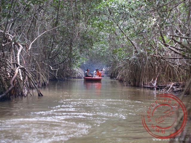 Met de speedboot door de bossen