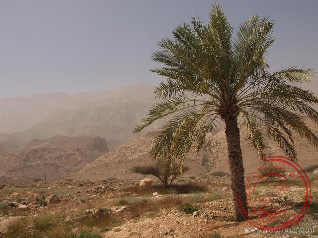 Het landschap van Oman