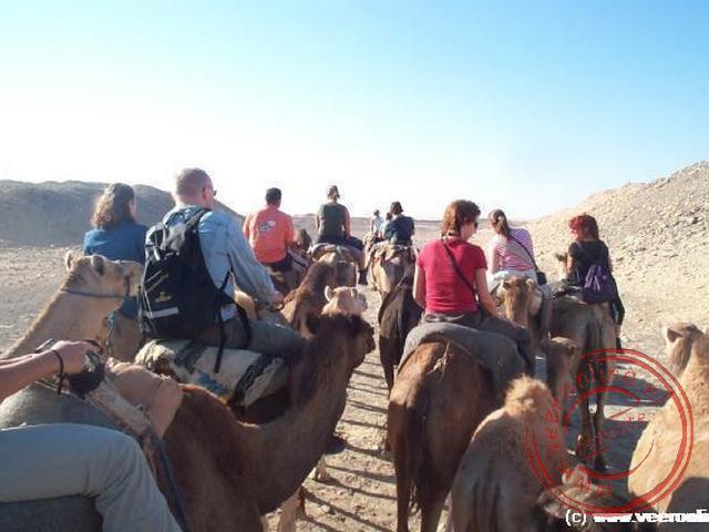 De kamelentocht