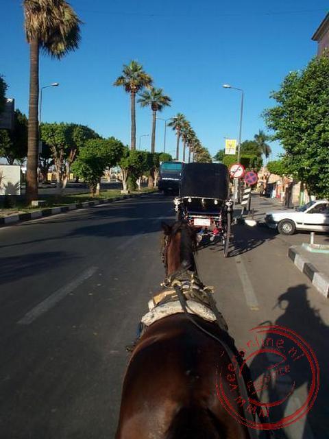 Met de paardenkar op weg naar de tempel van Karnak