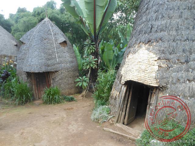 Bamboe huizen van de Dorze stam