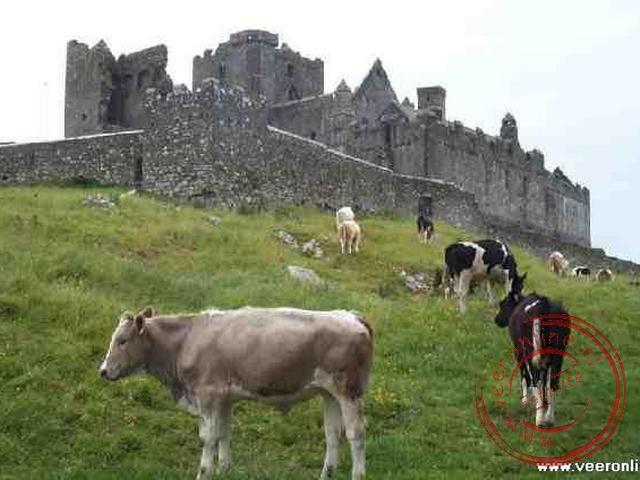 De indrukwekkende ruines van de Rock of Cashel