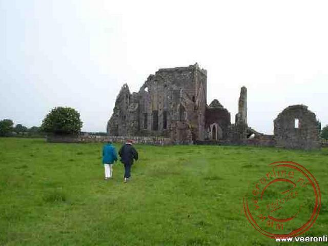 De ruines van de Abdij van de dominicanen bij Cashel
