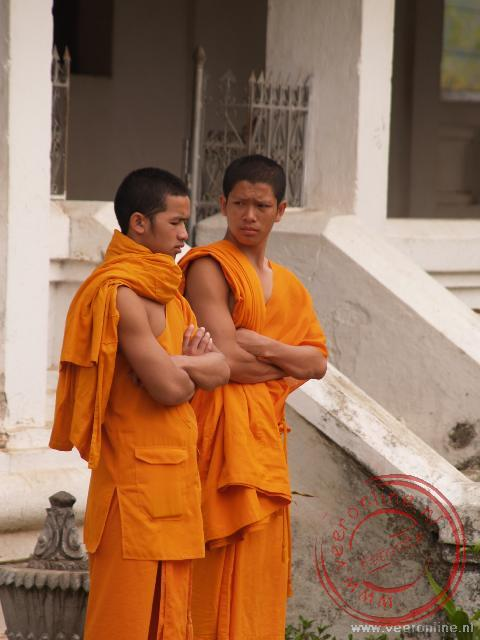 Monniken bij de Wat Aphay