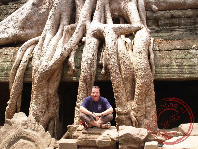 Enorme boomwortels nemen bezit van de tempel