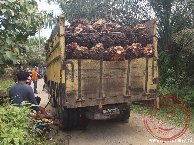 Een vrachtwagen met palmolievruchten heeft een gebroken achteras. Niemand kan er door