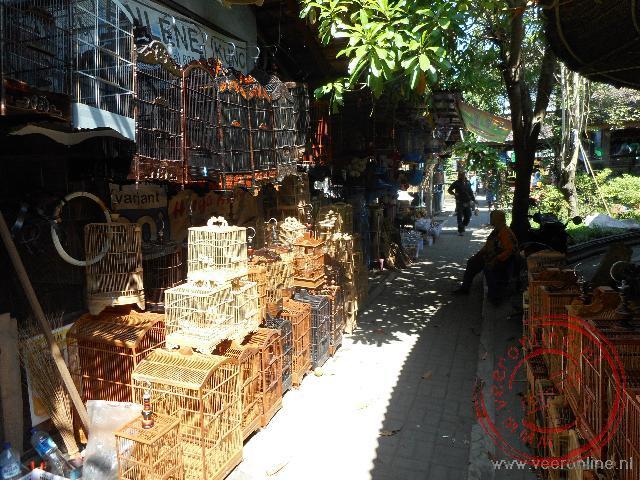 Talrijke vogeltjes en andere dieren worden verhandeld op de vogeltjesmarkt
