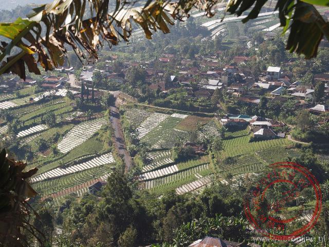 Uitzicht op de lager gelegen rijstvelden