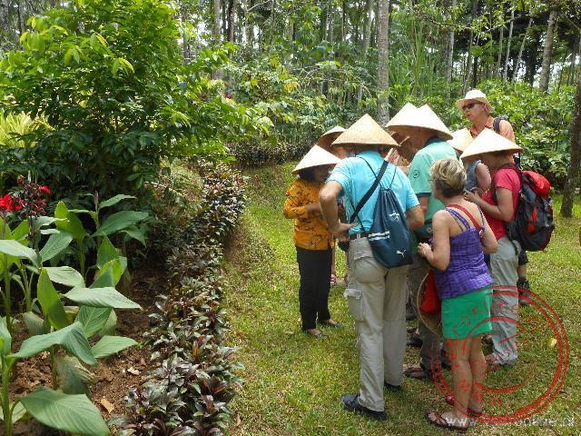 Een rondleiding foor een mooi aangelegde plantage