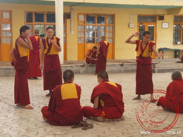 Jongen monniken debateren met elkaar met woorden en handgebaren in McLeod Ganj
