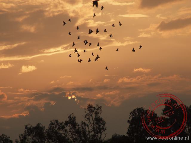 De zonsondergang in Agra