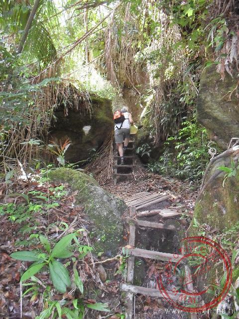 De trail door het National Park Bako