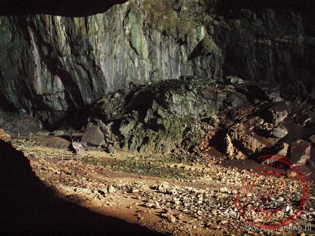 De Deer Cave is een verzamelplaats van miljoenen vleermuizen