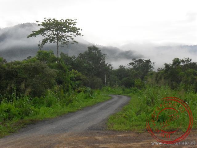 De bergen van Mulu liggen 's morgens verscholen in de mist