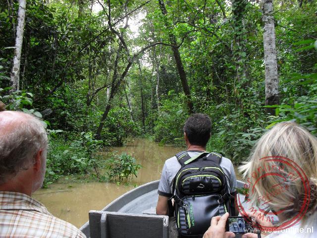 Door de hoge waterstand, varen we tussen de bomen door naar het Oxbow lake