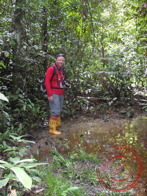 Een wandeling door het modderige woud, maar laarzen en bloedzuigersokken
