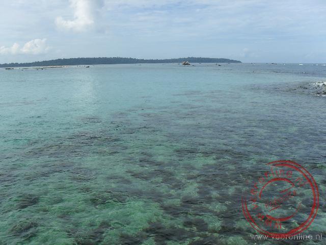 Het heldere water van de Zuid Chinese zee met hier en daar wat zeewier