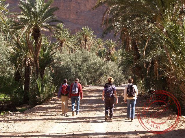 Een wandeling door de oase
