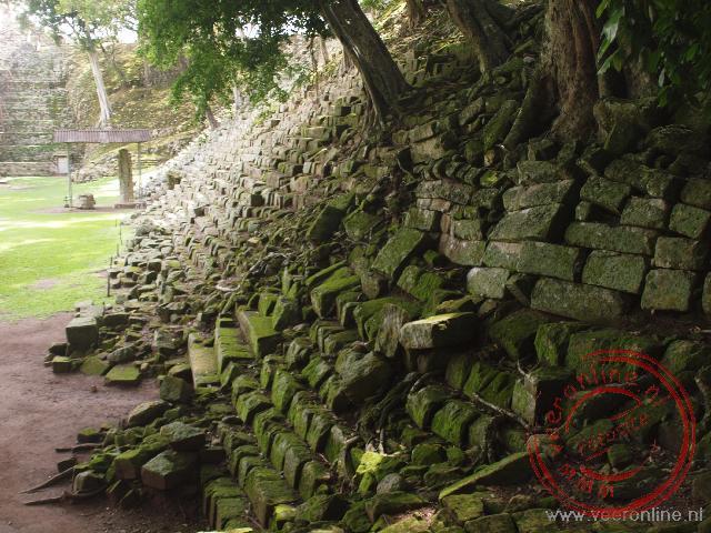 Boomwortels drukken de Copan bouwwerken opzij
