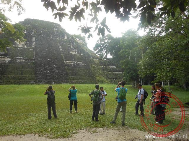 De gids vertelt over de historie van de tempels van Tikal