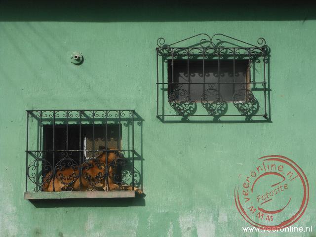 Een hond heeft zijn plekje gevonden in het raamkozijn
