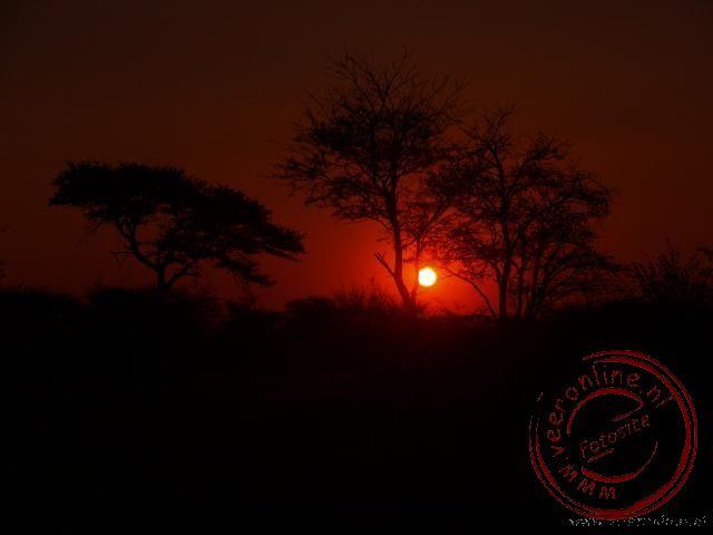 De zonsondergang in de Kalahari woestijn