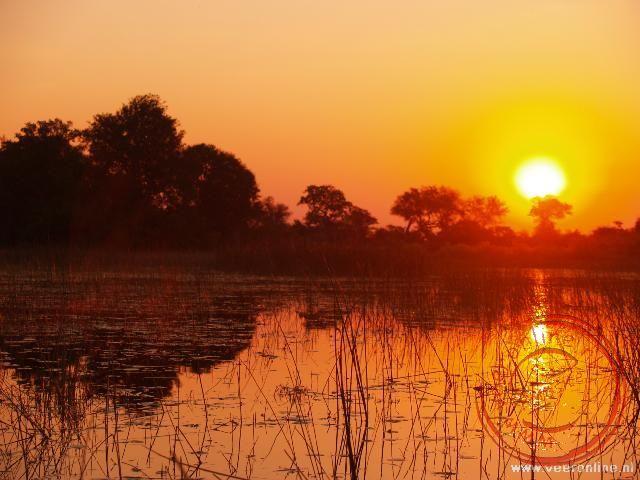 Zonsondergang in de Okavango Delta