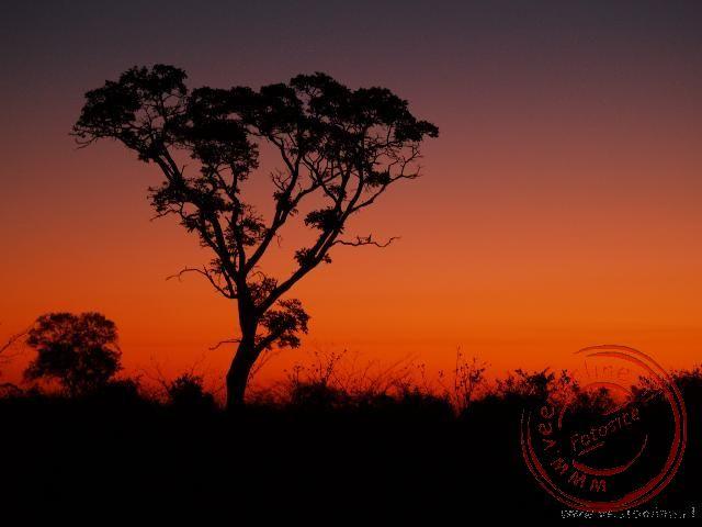 De prachtige zonsondergang in Botswana