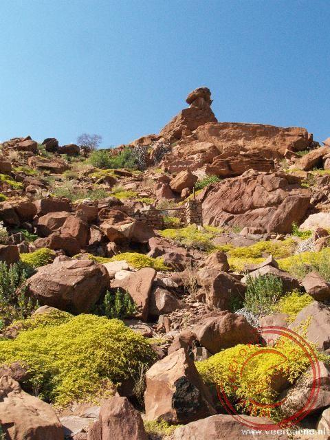 De grillige rotsen bij Twijfelfontein