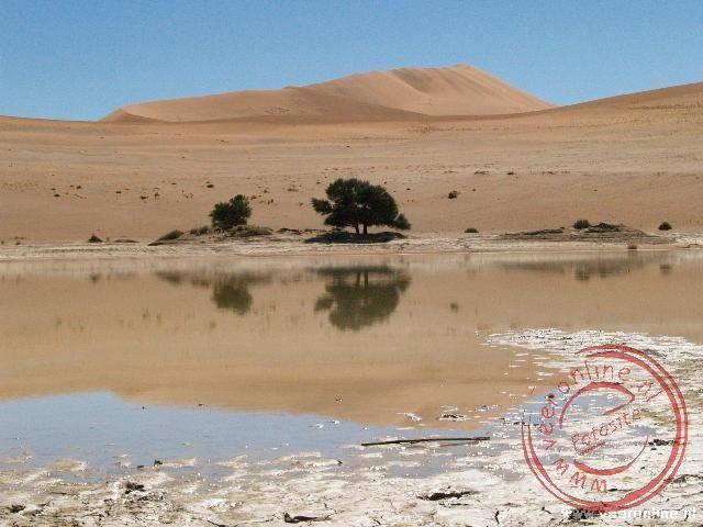 Het laatste restje water van de regenval begin dit jaar in de Sossusvlei