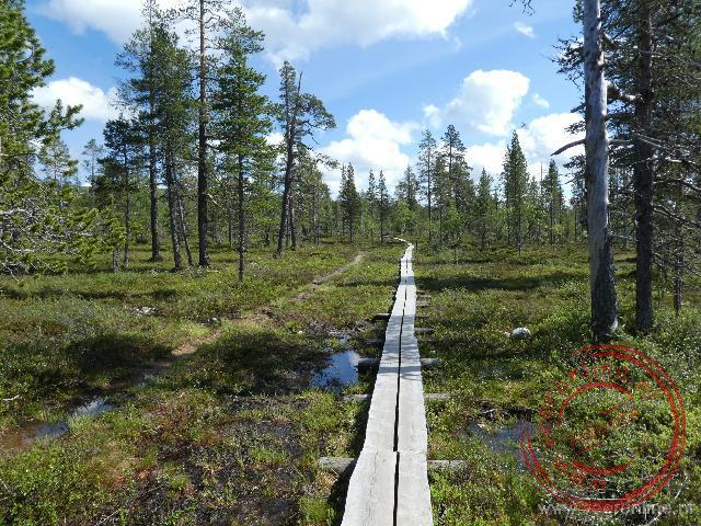 Het wandelpad voor het Urho Kekkonen National Park