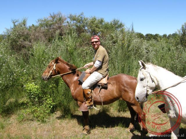 Ronald te paard in Pucón