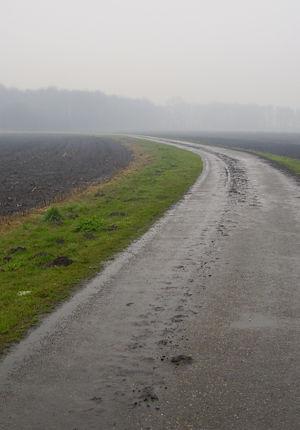 Pieterpad deel 1 - Wandelen over het Pieterpad van Pieterburen naar de Sint Pietersberg. Het Pieterpad is het meest bekende en meest bewandelde lange afstandspad van Nederland.