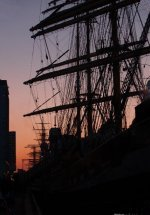 Sail Amsterdam 2005 -