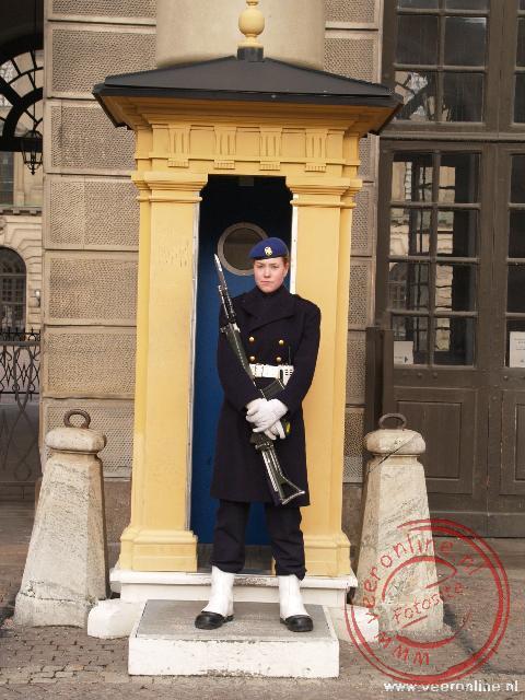 Een wacht voor het paleis